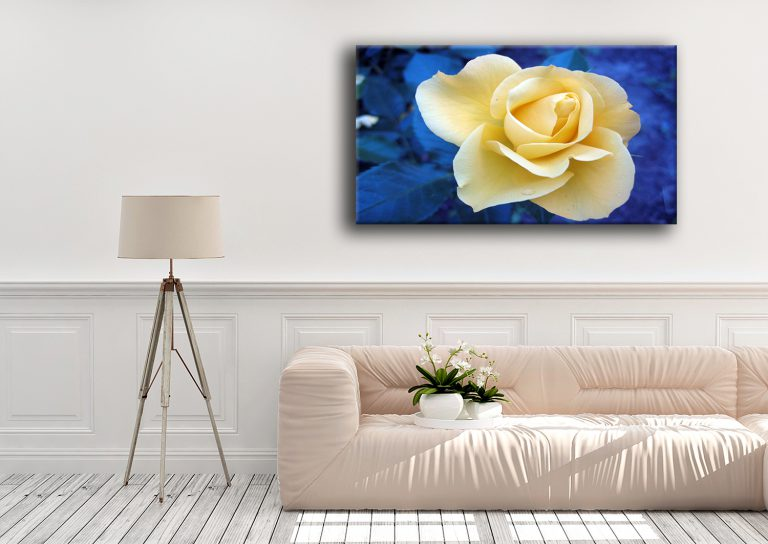 high quality canvas prints of Peaceful flower wall art