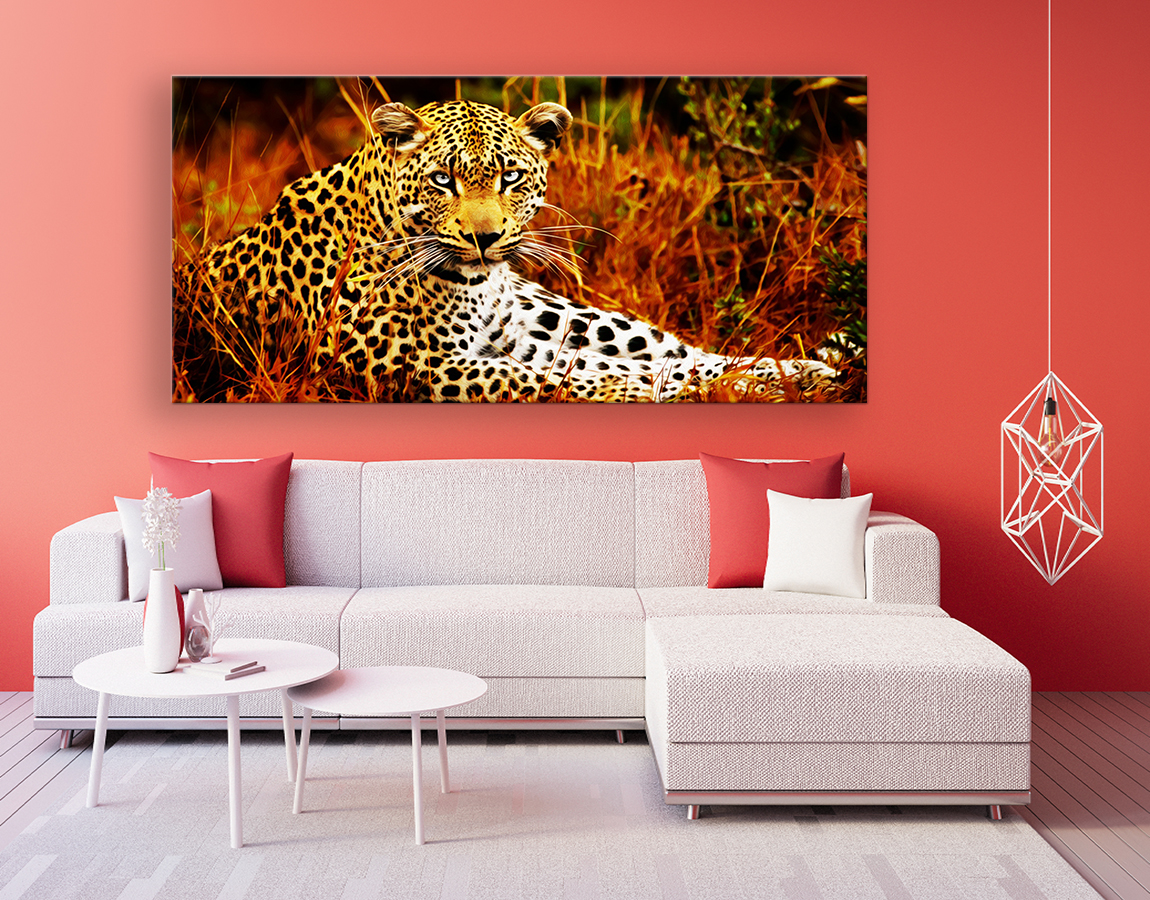 Stunning leopard in waiting