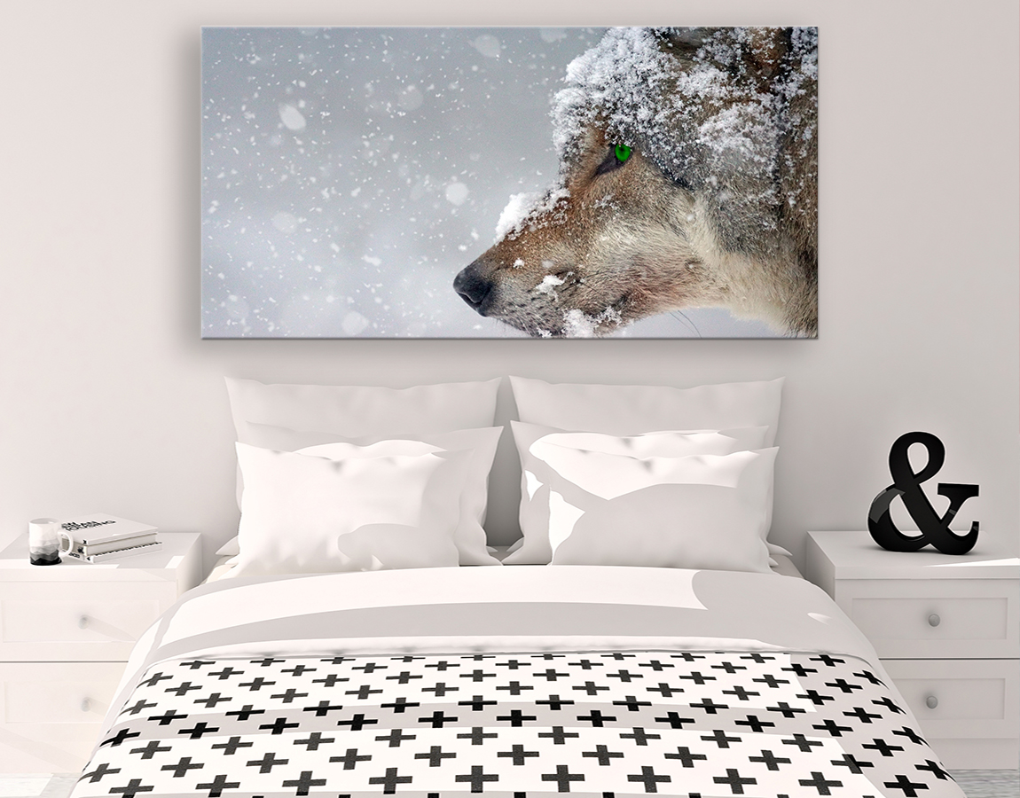 Snow covered wolf
