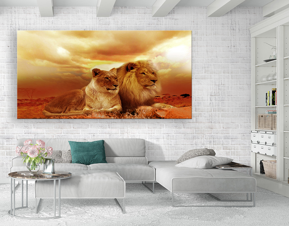Lion and lioness in desert
