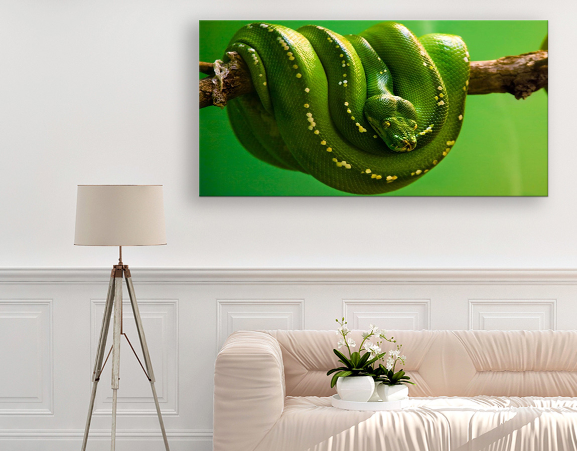 Green and yellow spotted snake