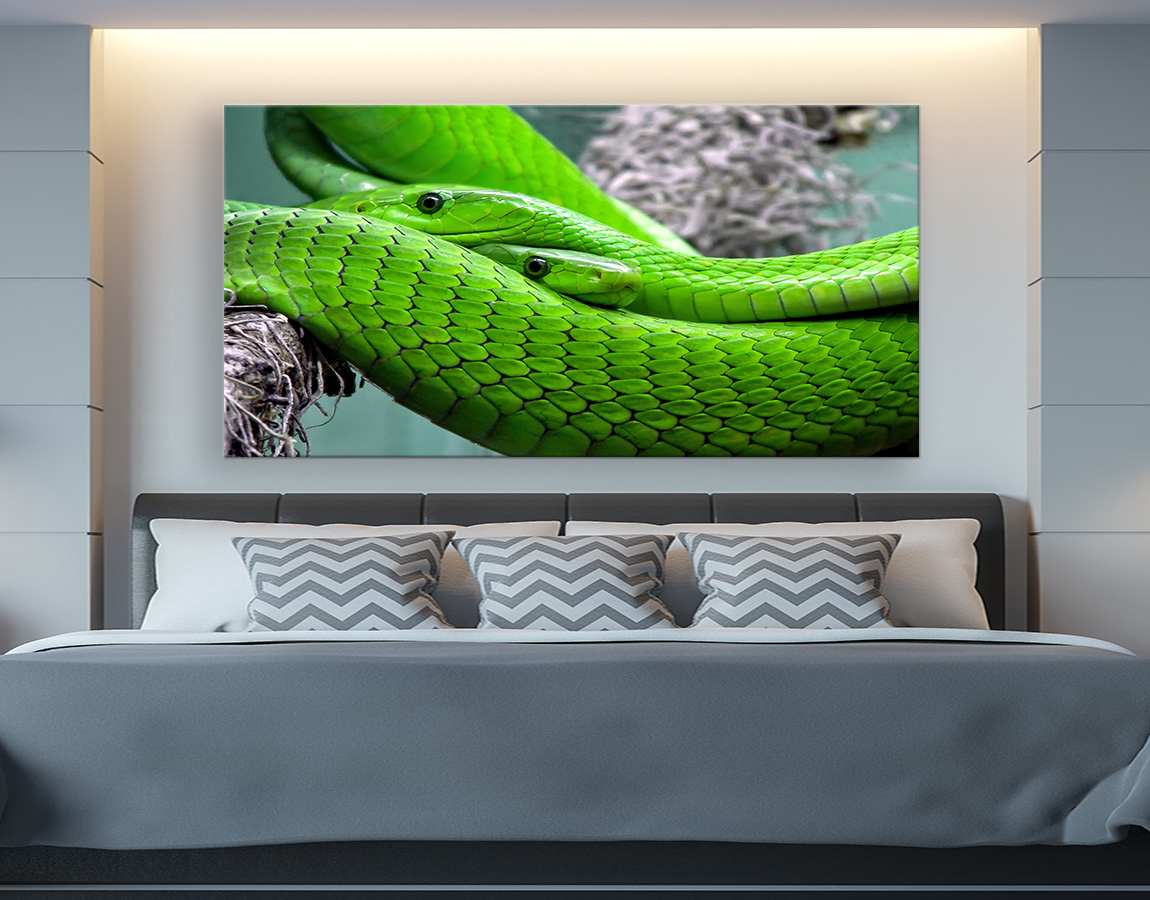 Two green snakes